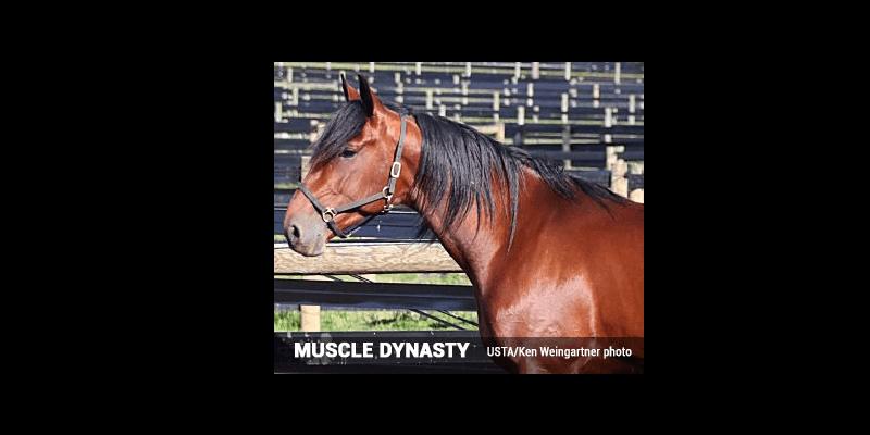 La concentration est la clé de Muscle Dynasty, élève de Wellwood